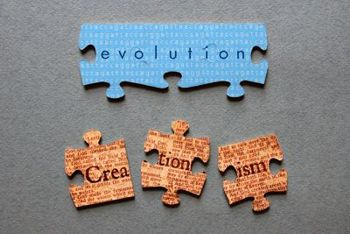 evolution & creation puzzle wp